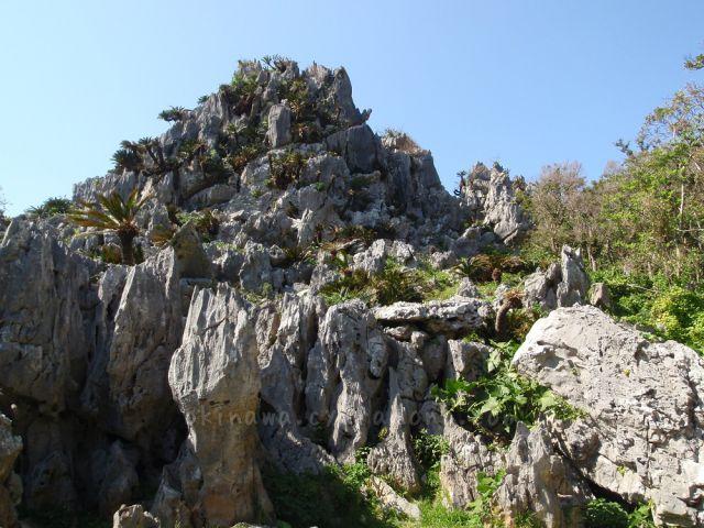 大石林山の悟空岩