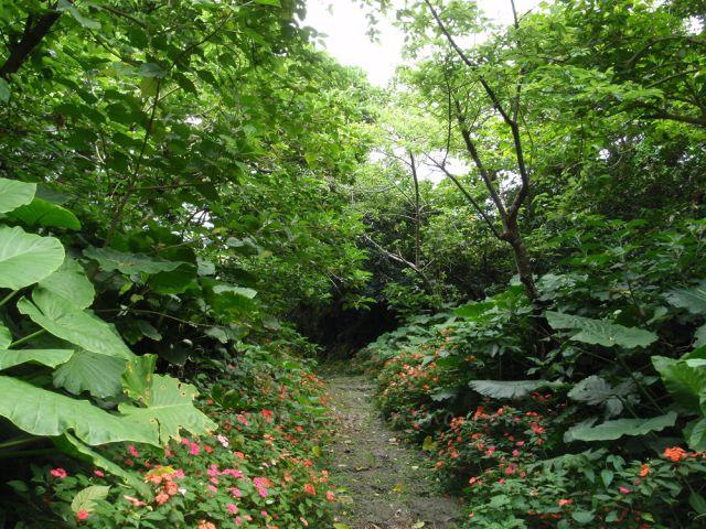 垣花樋川への石畳道
